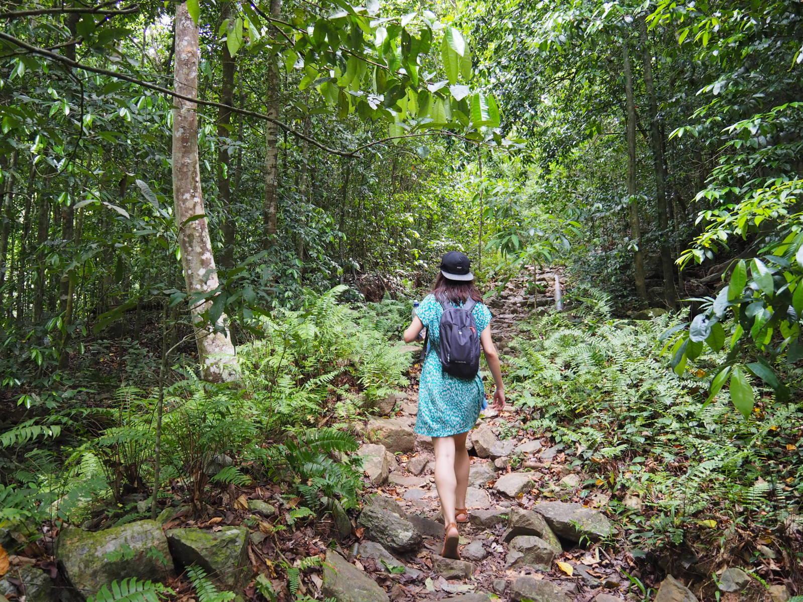 Sara exploration cascades